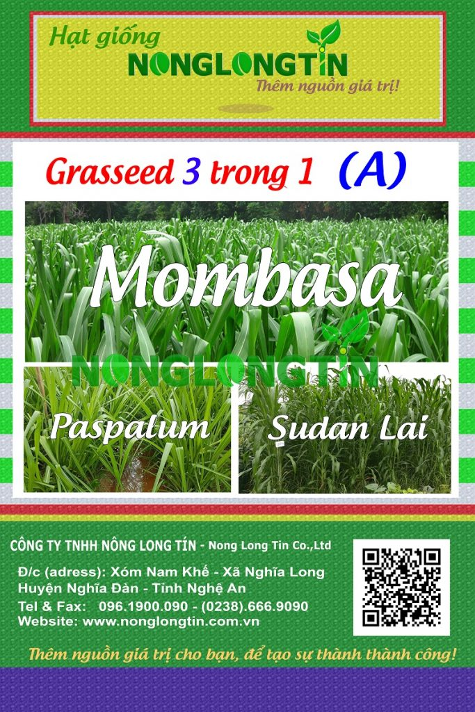 combo 3a - 3 loại giống cỏ